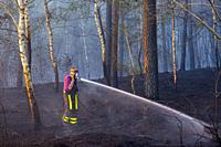 Tilburg - Moergestel, Netherlands. Due to climate change causing a huge draught, uncontrolable forrest fires occur more and more frequently, especiall...