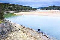 Man, river and sandy sediments in low tide close to the sea. Isla, Cantabria, Spain, Europe.