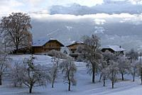 France, Haute savoie (74), Alps, cottages in winter from the Megeve road.
