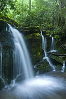 Stream & Waterfalls in Greenbrier in Great Smoky Mountains National Park, TN.