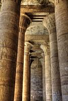 Columns in the Festival Hall, Temple of Horus, Edfu, Egypt