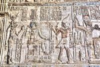 Wall of Reliefs, Temple of Osiris and Opet, Karnak Temple Complex, UNESCO World Heritage Site, Luxor, Egypt