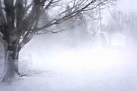 blowing snow and strong winds, Meaford; Ontario; Canada.