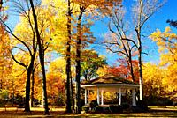 A gazebo sits under a canopy of fall foliage.
