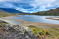Laguna with marsh grass, Patagonia National Park, Chacabuco valley near Cochrane, Aysen Region, Patagonia, Chile.