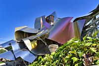 El Ciego City, Frank Gehry architect, La Rioja Area, Logroño province, Marques de Riscal Hotel, spain, wine cellar.