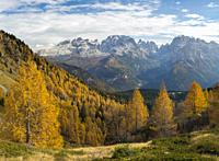 The summits of Brenta mountain range towering above Madonna di Campiglio. Brenta group in the Dolomites, part of UNESCO world heritage The Dolomites. ...