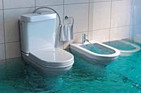 Broken toilet and bidet overflowing. 3d illustration.
