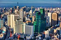 Skyscraper, Izumi Garden Tower, Tokyo City View, Tokyo, Japan
