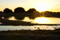 Pond at sunset. Paraje de Botas, Almansa, Albacete province, Castile-La Mancha, Spain