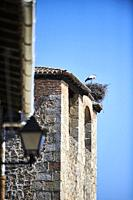 White stork in his nest over bell tower in Cuacos de Yuste, Extremadura (Spain)
