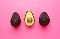 Avocado. Tropical tree with an erect trunk, a dilated and globular crown, large and evergreen leaves, elliptical or spear-shaped, greenish spike flowe...