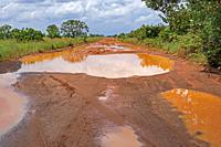 Large rain puddles in red mud of the Linden-Lethem dirt road linking Lethem and Georgetown in the rainy season, Guyana, South America