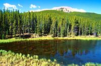 Mountain lake, coniferous forest, Powderface Trail, Kananaskis Country, Province of Alberta, Canada