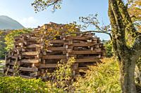 Woods of Net sculpture by Toshiko Horiuchi Macadam at Hakone Open Air Museum, Japan.