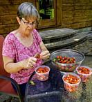 Woman preparing strawberries for the freezer.