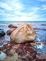 Kelp and rocks at the shores of Moens Klint, Denmark, Europe.
