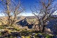Ruins of the castle and Pelegrina village fron The River Sweet Canyon. Guadalajara. Spain. Europe.