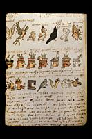 Aztec calendar with birds of the day, lords of the night, and the day signs. Codex Tudela, 16th-century pictorial Aztec codex. Folio 98v. Museum of th...