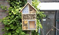Craftsman built insect hotel decorative wood house with compartments and natural components refuge made to protect and promote ladybugs and butterflie...