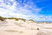 Sand dunes on Frisian Island Terschelling, The Netherlands, Europe.