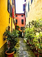 Street view of Cutigliano, Pistoia, Abetone, Italy, Europe.