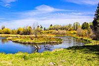 Wood River, southern Oregon.