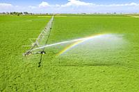 LaSalle, Colorado - A center pivot irrigation system in eastern Colorado's Weld County. The area gets only 15 inches of rain per year, so water for ir...