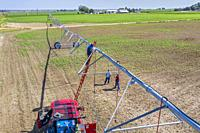 LaSalle, Colorado - Workers install a center pivot irrigation system in eastern Colorado's Weld County. The area gets only 15 inches of rain per year,...