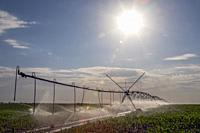 Hudson, Colorado - A center pivot irrigation system in eastern Colorado's Weld County. The area gets only 15 inches of rain per year, so water for irr...