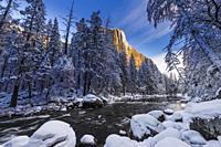El Capitan above the Merced River in winter, Yosemite National Park, California USA.