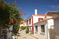 Traditional houses in the town center of the ancient Tenedos, todays Bozcaada island, Bozcaada, Canakkale, Aegean Region, Turkey