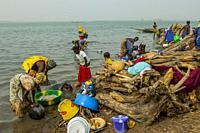 Women washing dishes and doing laundry on the bank of the Niger River in Segou, a city in the center of Mali, West Africa.