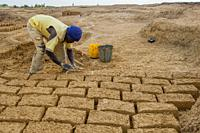 The mudbrick production in the Bandiagara area in Mali, West Africa: the mud is being filled into the brick forms.
