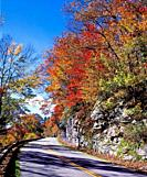 Autumn along the Blue Ridge Parkway in North Carolina in the United States.