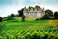 Chateau overlooking vineyards on the Cotes de Duras, Lot et Garonne, Aquitaine, France.