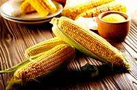 Kitchen table with raw and grilled sweet corn cob on baking paper and grits in wooden bowl.
