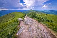 Path on Wetlina High Mountain Pasture in Western Bieszczady Mountains in Poland, view with Smerek Mount on background.