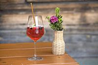 verre de Spritz sur la terrasse du restaurant d'altitude Knuttenalm, Vallee du Riva (Val di Riva en italien, Reintal en allemand), adjacente de la Val...