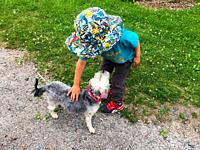 A young child petting his favourite dog, who looks up at him, on a hot summer day Halifax, Nova Scotia, Canada.