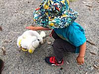 A child sitting down to pet his favourite dog on a hot summer day, Halifax, Nova Scotia, Canada.