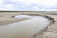 Official nature reserve area and swamp 'The Drowned Land of Saeftinghe' in the southwest Netherlands, located in eastern Zeelandic Flanders. It is a t...