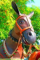 Donkey head of festive troupe, Catalan popular culture, Barcelona, ??Catalonia, Spain