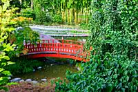 Japanese wooden bridge in Albert Kahn park, Boulogne-Billancourt, France.