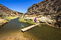 Hiker crossing the stream at Water Canyon, Santa Rosa Island, Channel Islands National Park, California USA.