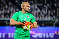Wolfsburg, Germany, March 20, 2019: portrait of Serbian goalkeeper Marko Dmitrovic during the international friendly game between Germany and Serbia a...