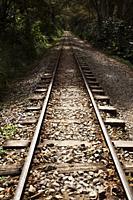 Train Track to Machu Pichu.
