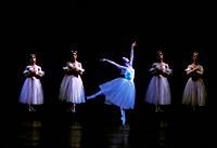 """Ballet """"""""Giselle"""""""". . Miami. Florida. . USA."""