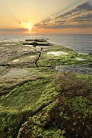 Sunrise at Cabo Cervera in Torrevieja, Alicante province in Spain. Vertical shot with space for text.