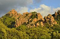 France, Corsica, Corse du Sud, Gulf of Porto, Unesco World Heritage Site, Calanches of Piana.